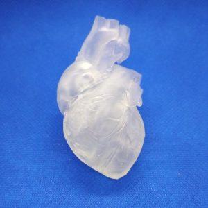 Technologia SLA-Żywica Clear-Model anatomiczny serca